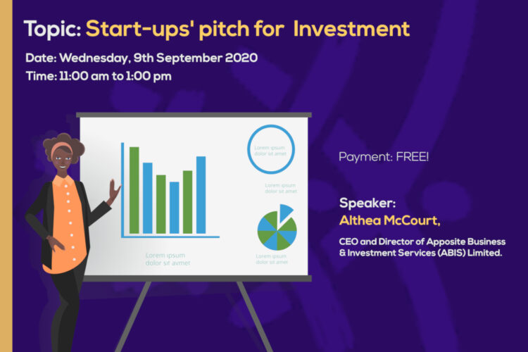 Somo Ongoza Webinar on Startups' pitch for Investment